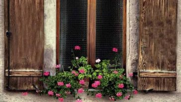 Pencere Önüne Koyulan Çiçekler - Osmanlı Geleneği 1